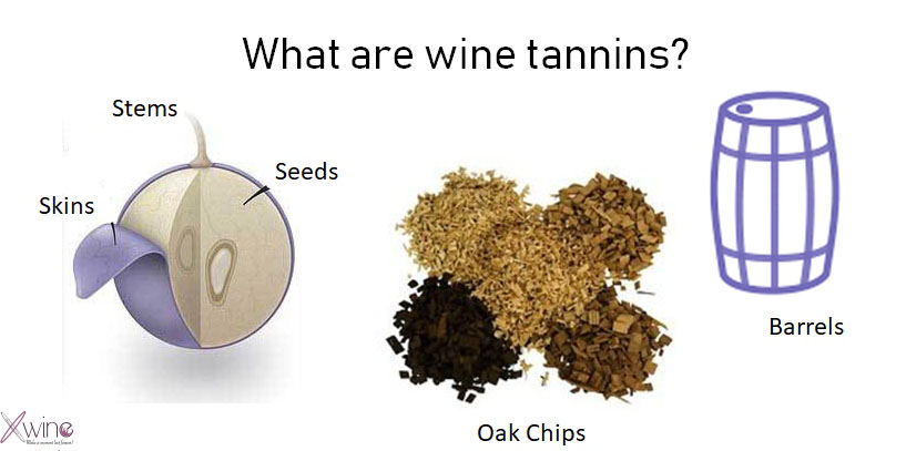 What are wine tannins 1