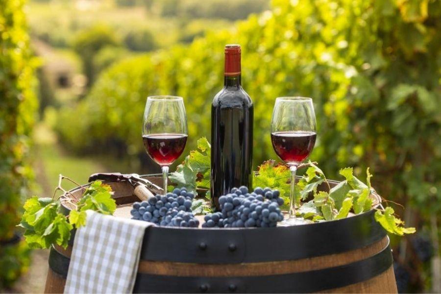 4 loại rượu vang