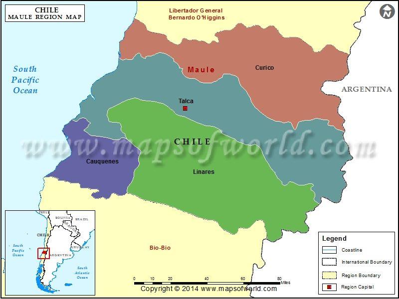 Rượu Vang Chile Tripantu Grand Reserve